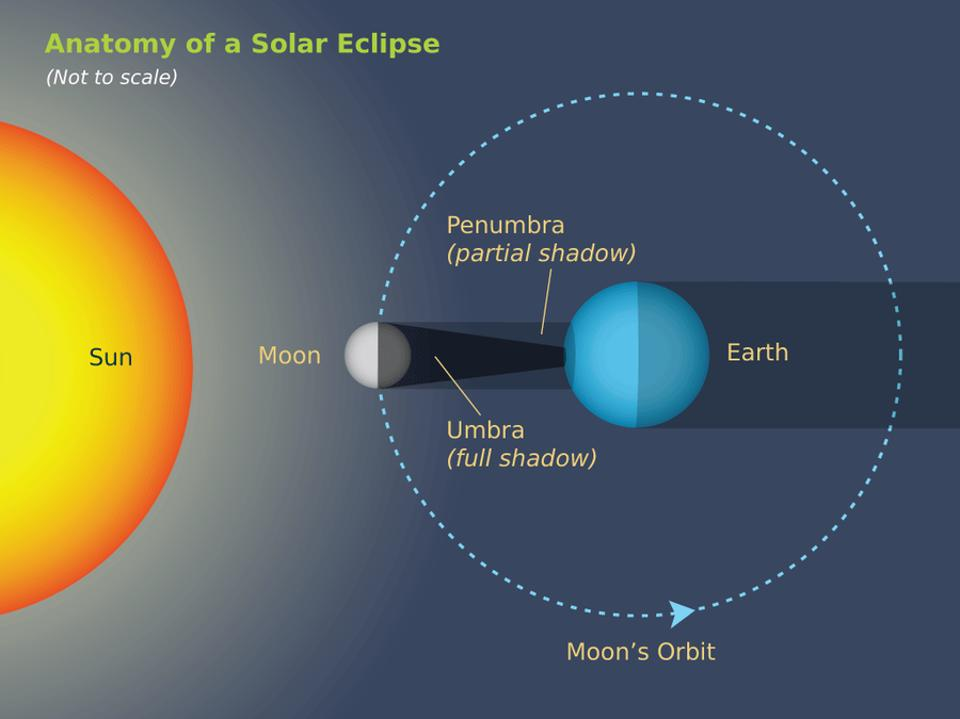 Solar Eclipse Diagram Labeled.Total Solar Eclipse Illustration Trendintech